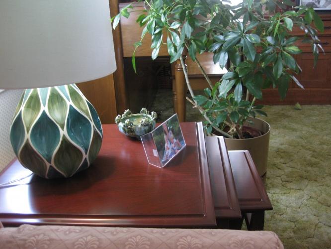 Scott Table Lamp - Photo by Karen G.