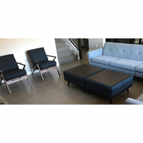 Hughes L-Sectional  - Photo by Monica Patel