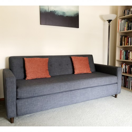 Beau Shop The Look Korver Sleeper Sofa   Photo By Amiya Gupta