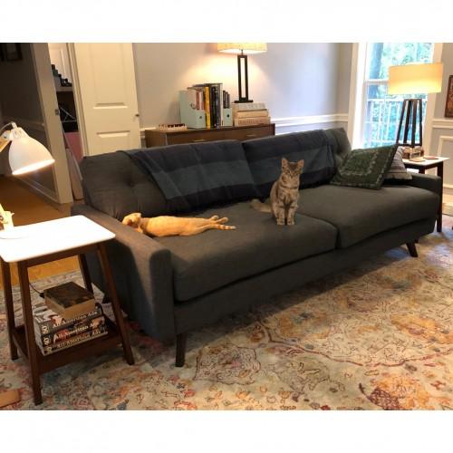 Enjoyable Pet Friendly Furniture Fabrics Joybird Interior Design Ideas Gentotryabchikinfo