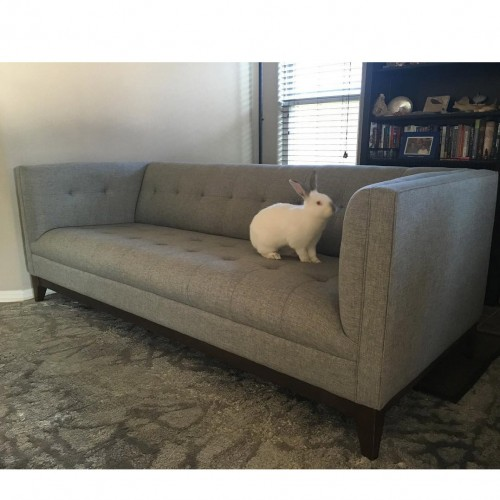 The Look Stowe Sofa Photo By Sabrina C
