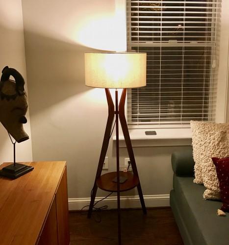 Myla Floor Lamp - Photo by Ricky Harrison