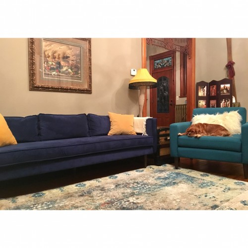 Serena Sofa - Photo by Brenda Adams