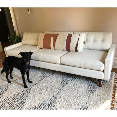 Pet Friendly Furniture & Fabrics | Joybird
