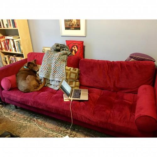 Briar Sofa - Photo by Aimee Levitt
