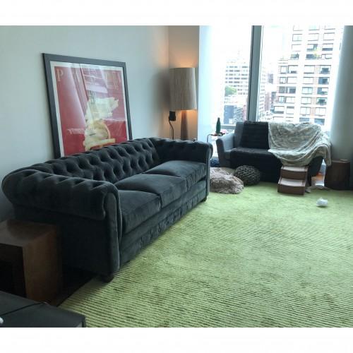 Liam Sleeper Sofa - Photo by Duke Sherman