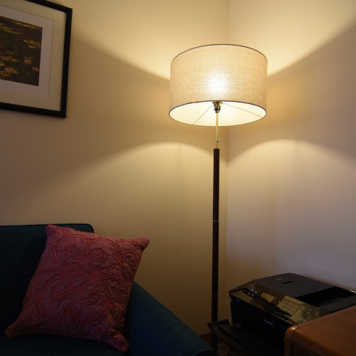 Ebo Floor Lamp - Photo by Kevin Worgul
