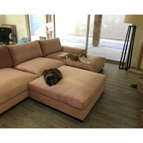 Holt Modular Sectional - Photo by Carol Jenner